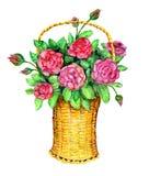 Корзина с красными розами Стоковое фото RF