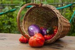 Корзина с овощами Стоковая Фотография