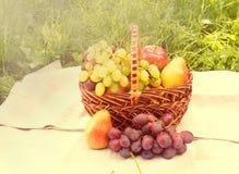 Корзина с плодоовощами на салфетке среди зеленой травы Стоковая Фотография