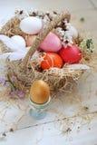 Корзина с покрашенными яйцами на белой деревянной предпосылке стоковые изображения