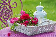 Корзина с розами стоковые изображения