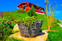 Корзина с цветками Стоковая Фотография RF