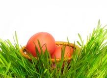 Корзина с яичками в траве. Стоковые Изображения RF