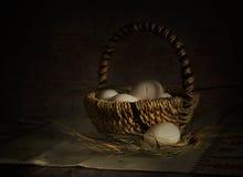 Корзина с яичками Стоковое фото RF