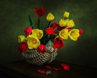Корзина тюльпанов Стоковые Фотографии RF