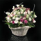 Корзина цветков на черноте Стоковая Фотография