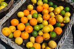Корзина цитрусовых фруктов Стоковая Фотография
