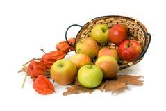 корзина яблока Стоковые Фотографии RF