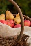 Корзина яблок и груш 3 Стоковое Изображение RF