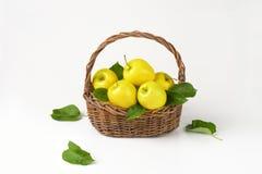 Корзина яблок Стоковое Изображение