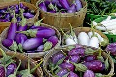 корзина aubergines Стоковая Фотография RF