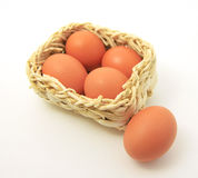 корзина eggs квадрат Стоковые Изображения