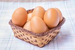 корзина eggs одно Стоковое Изображение RF