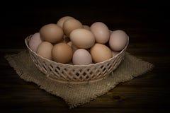 корзина eggs одно Стоковые Фотографии RF