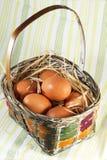 корзина eggs свежая Стоковое фото RF