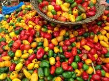 Корзина na górze красных, зеленых и желтых перцев Стоковое фото RF