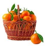 Корзина tangerines на белой предпосылке Стоковые Фото