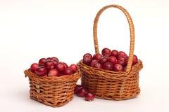 Корзины вполне зрелых ягод стоковые изображения rf