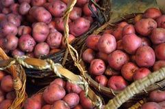 Корзины вполне малых красных новых картошек Стоковая Фотография RF