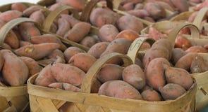 Корзины заново сжатых сладких картофелей Стоковое Фото