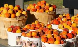 Корзины зрелых персиков Стоковое Изображение