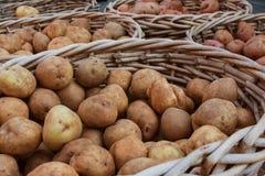 Корзины картошек на продаже на рынке местных фермеров Стоковая Фотография RF
