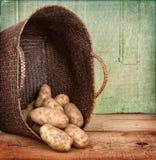 корзины разливать russet картошек вне Стоковое фото RF