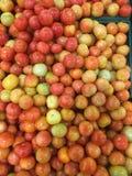 Корзины томата вполне свеже Стоковые Фото