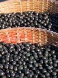 корзины acai Стоковая Фотография RF
