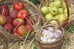 Корзины Wicker с яблоком и чесноком Стоковое Изображение