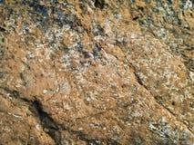 коричневая грубая каменная текстура Стоковые Фото