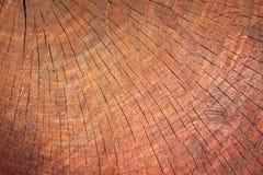 Коричневая деревянная текстура, предпосылка Стоковые Фото