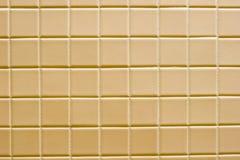 коричневая керамическая плитка Стоковая Фотография