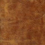 коричневая кожаная текстура Стоковые Изображения RF