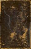 коричневая кожа поцарапала Стоковое Изображение RF