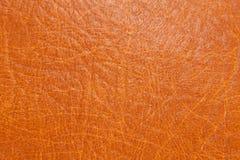 коричневая кожа Стоковое Изображение