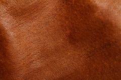 коричневая кожа Стоковая Фотография