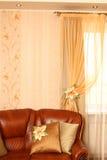 коричневая кожа Стоковые Фото