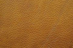 коричневая кожа Стоковое Фото