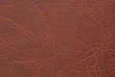 коричневая кожа Стоковое фото RF