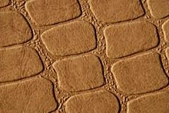 коричневая кожа Стоковое Изображение RF