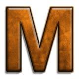 коричневая кожа m Стоковые Фотографии RF