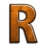 коричневая кожа r Стоковое Изображение RF