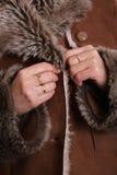 коричневая повелительница пальто Стоковое Изображение