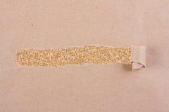 коричневая сорванная бумага пакета Стоковое фото RF