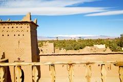 коричневая старая конструкция в пальме снега башни Африки Стоковая Фотография