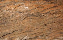 коричневая старая древесина текстуры Стоковая Фотография