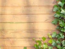 коричневая стена Стоковое Изображение
