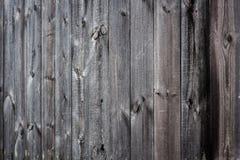 коричневая текстура деревянная Деревянная предпосылка Стоковая Фотография