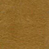 коричневая текстура кожи крупного плана Стоковые Фото